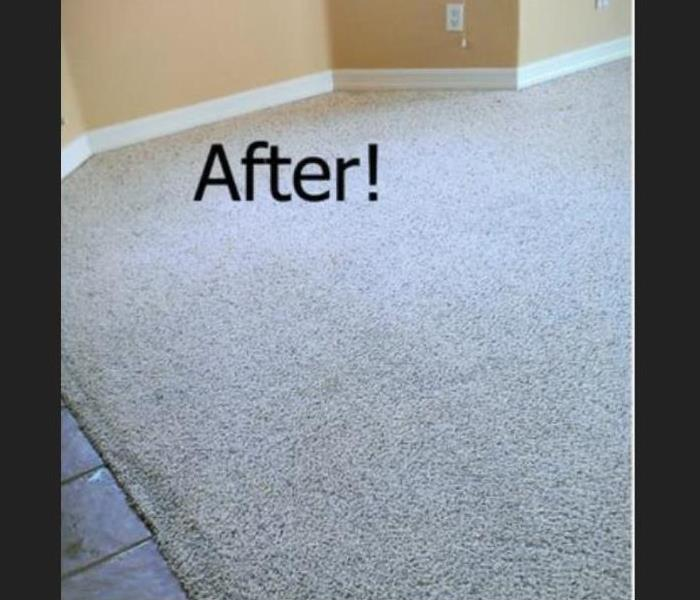 Restored back to clean fresh carpet from heavy traffic
