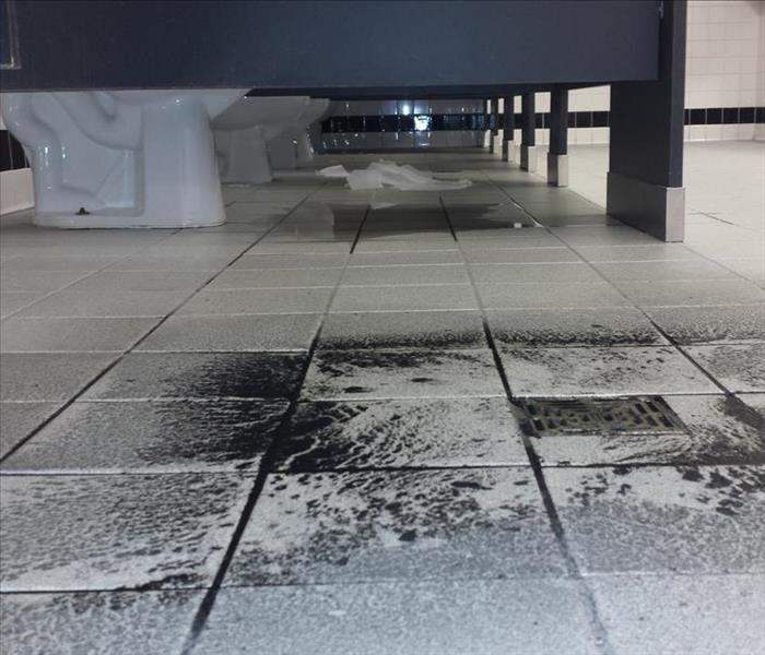 Commercial Commercial Sewage Damage
