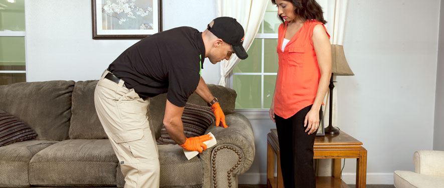 Fayetteville, GA carpet upholstery cleaning